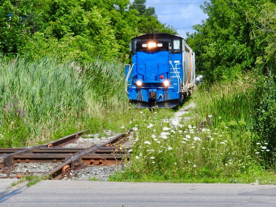 Shortline (Trillium Railway) approaches the diamonds at Brampton
